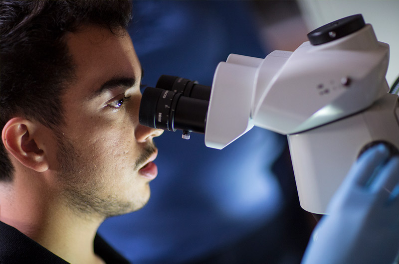 Student in lab looking through microscope